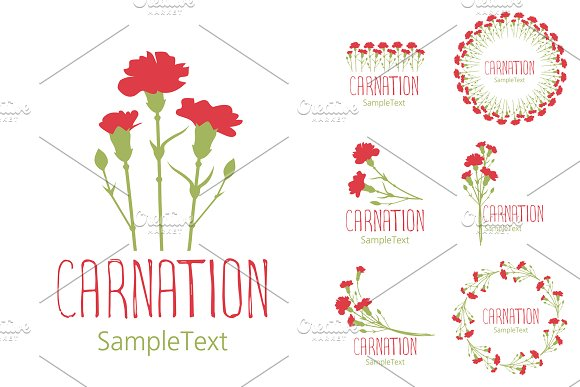 Set Of Designs With Carnations