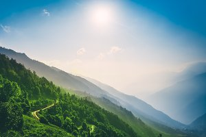 Tourist trail among green forest in Mountains