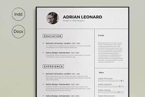 the resume resume templates creative market