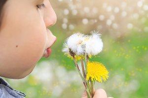 Little kid blowing dandelion seeds