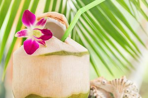 Tropical exotic fresh green coconut water drink near palm with o
