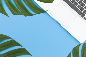 Tropical top view summer botanical concept still life laptop