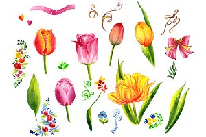 Summer colorful tulips PNG set