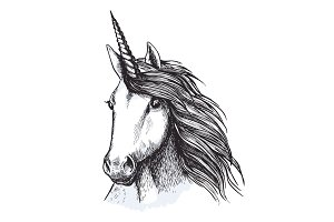 Unicorn horse head sketch for tattoo design