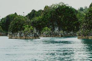 Small rocky islands in Pianemo, Raja Ampat, West Papua, Indonesia
