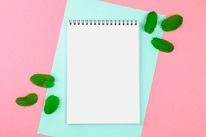 An empty notebook with a blue handle and mint leaves on a blue and pink pastel background. mock-up, frame, template.