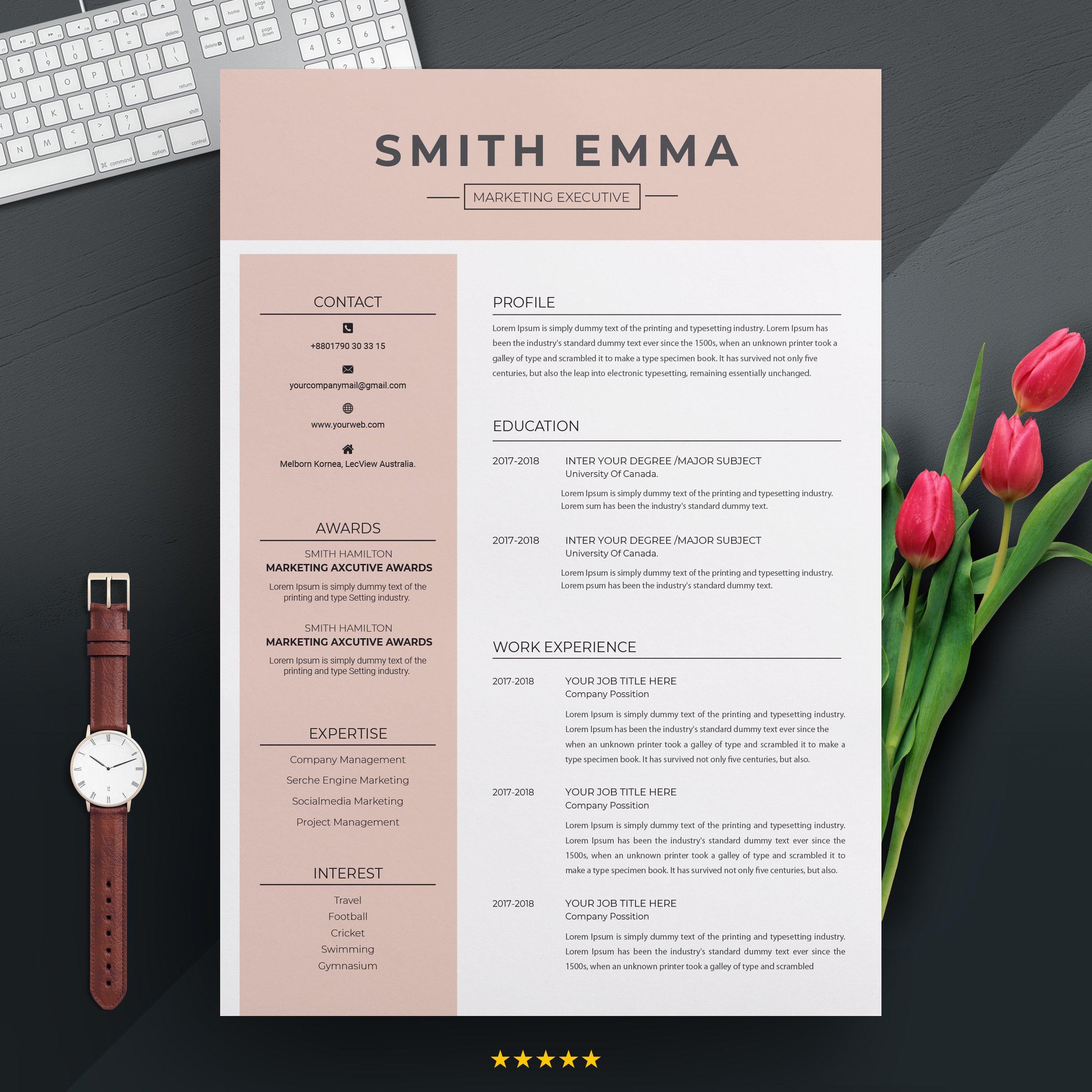 Modern Professional Resume Template Creative Illustrator