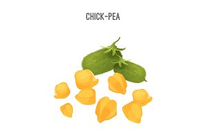 Chick-pea small yellow seeds for fodder and food forage purposes
