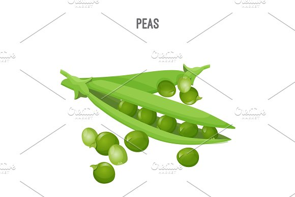 Peas In Oblong Green Pod With Round Seeds