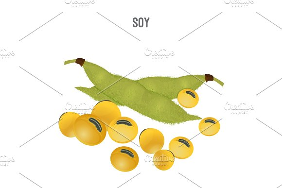 Ripe Soy Beans That Replace Meat For Vegetarians