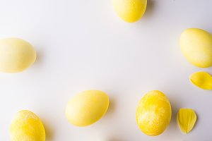 Yellow eggs and flower petals on a white background.