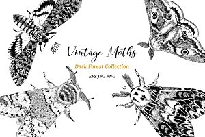 Vintage Moths Dark Forest Collection