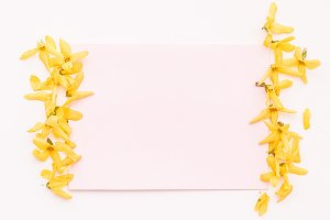 Yellow flowers and stationery