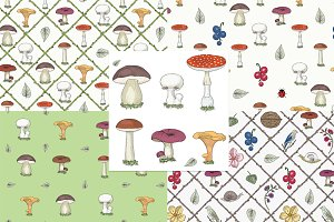 Mushrooms & Forest Collection