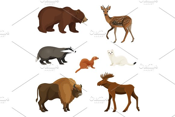 Forest Animals With Fluffy Fur Predators And Herbivorous Set