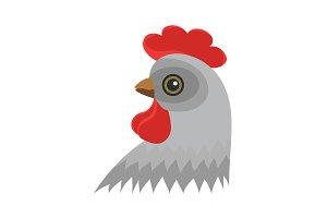 Color image. Head of chicken