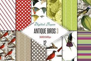 Digital paper antique birds 3