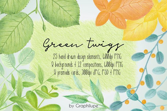 Green Twigs Illustration Kit