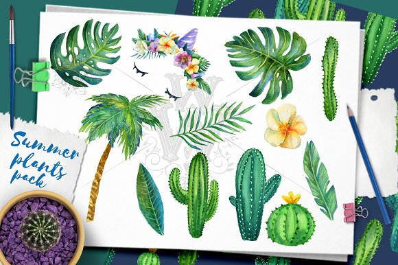 Summer Plants Pack