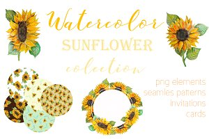 Watercolor set with sunflower.