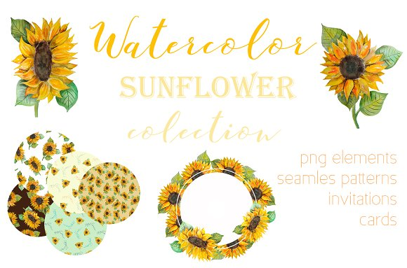 Watercolor Set With Sunflower
