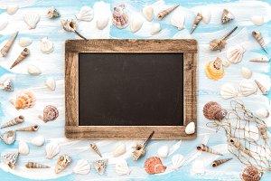 Sea shells chalkboard flat lay