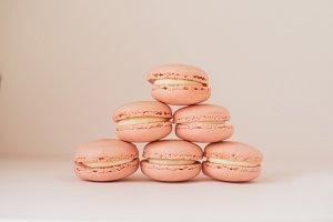 Pink Macarons Bundle