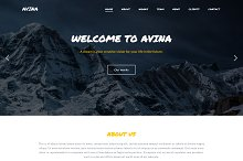 Avina - Business Template