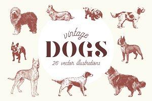 VINTAGE DOGS | 26 Vectors