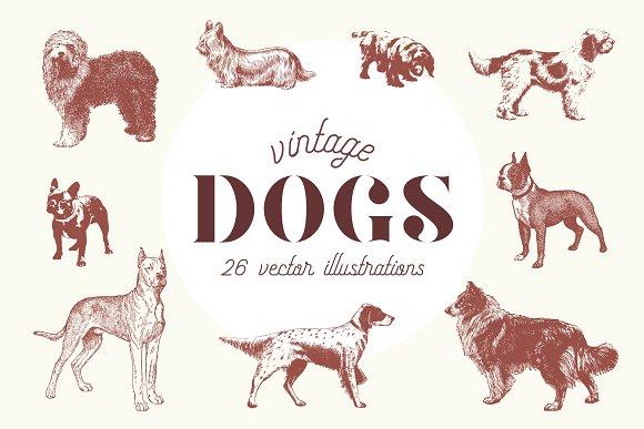 VINTAGE DOGS 26 Vectors