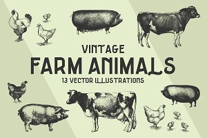 FARM ANIMALS | 13 Vectors