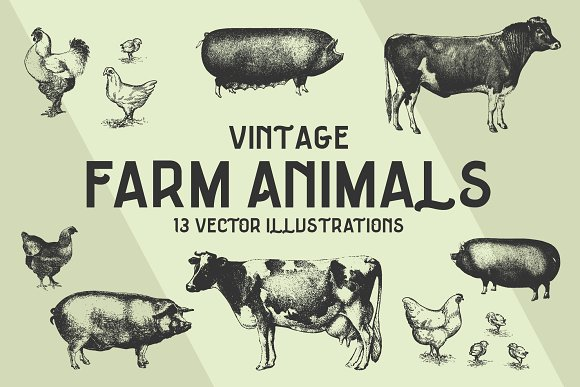 FARM ANIMALS 13 Vectors