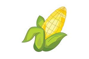 Color vector illustration. Corn