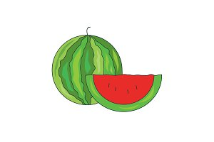 vector illustration. Watermelon icon