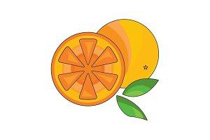 Color vector illustration. Orange