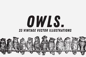 OWLS | 23 Vintage Vectors