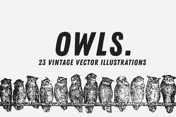 OWLS 23 Vintage Vectors