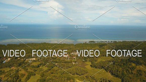 Coastal City Near The Sea Philippines Bohol