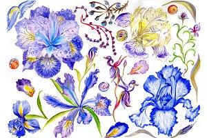 Picturesque blue irises PNG set