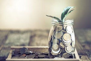 bank with coins and green sprout
