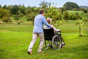 Senior man pushing woman in wheelchair, green autumn nature