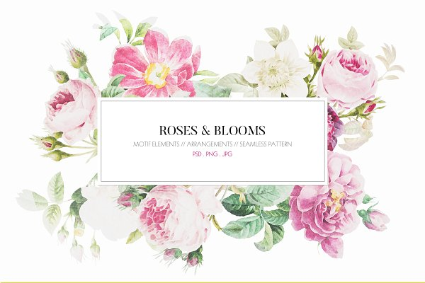 Patterns: TSTUDIO - Roses & Blooms