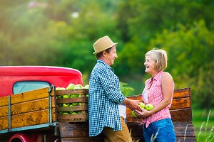 Senior couple harvesting apples, standing at vintage red car