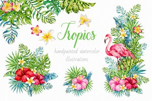 Tropics.Watercolor collection