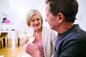 Senior couple sitting in living room, drinking champagne
