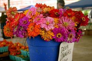 Floral Photo Bundle