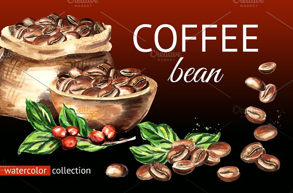 Coffee Bean Watercolor Collection