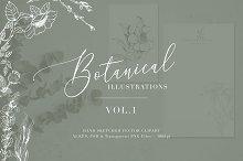 Botanical Illustrations Vol.1