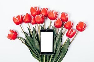 Bouquet of red tulips and phone