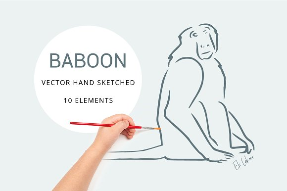Baboon Hand Sketched Vector